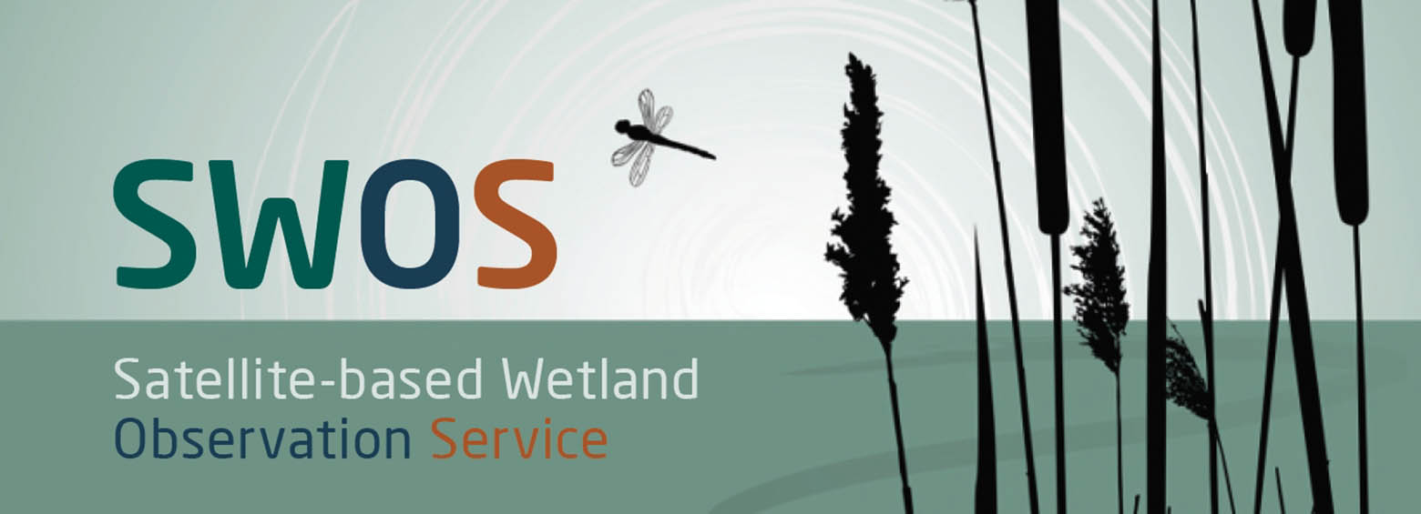 SWOS policy report available