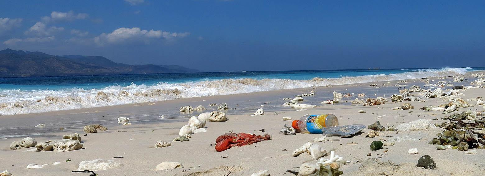 Detection of marine plastic pollution