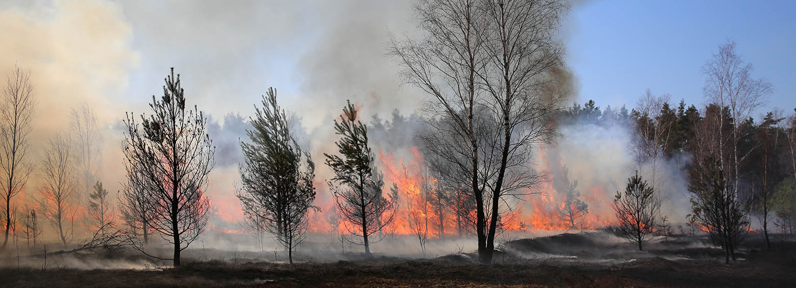 FireSENSE - Improving fire monitoring