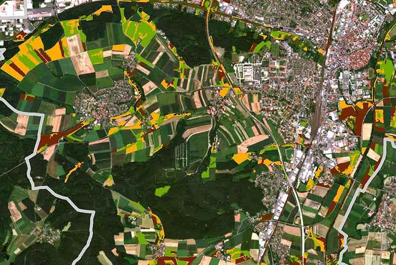 intensification of grassland use