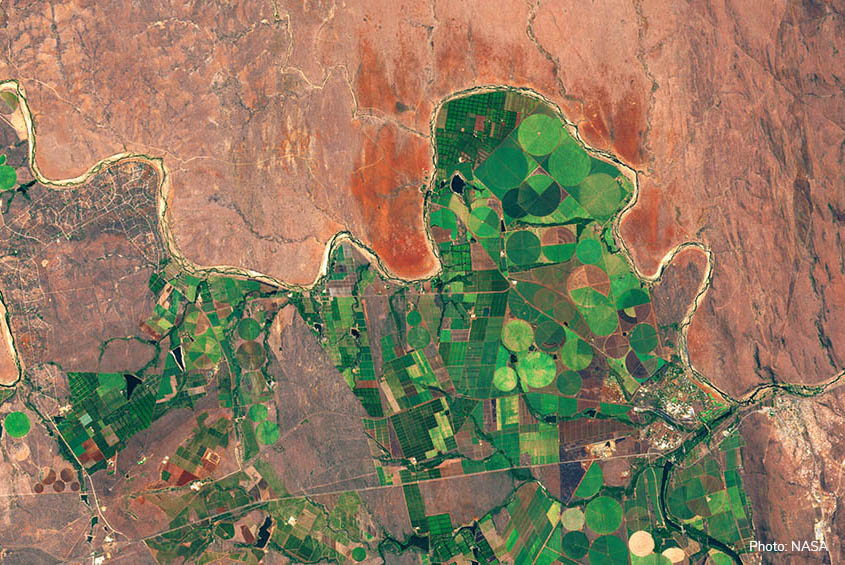 Irrigated agricultural production in dry areas