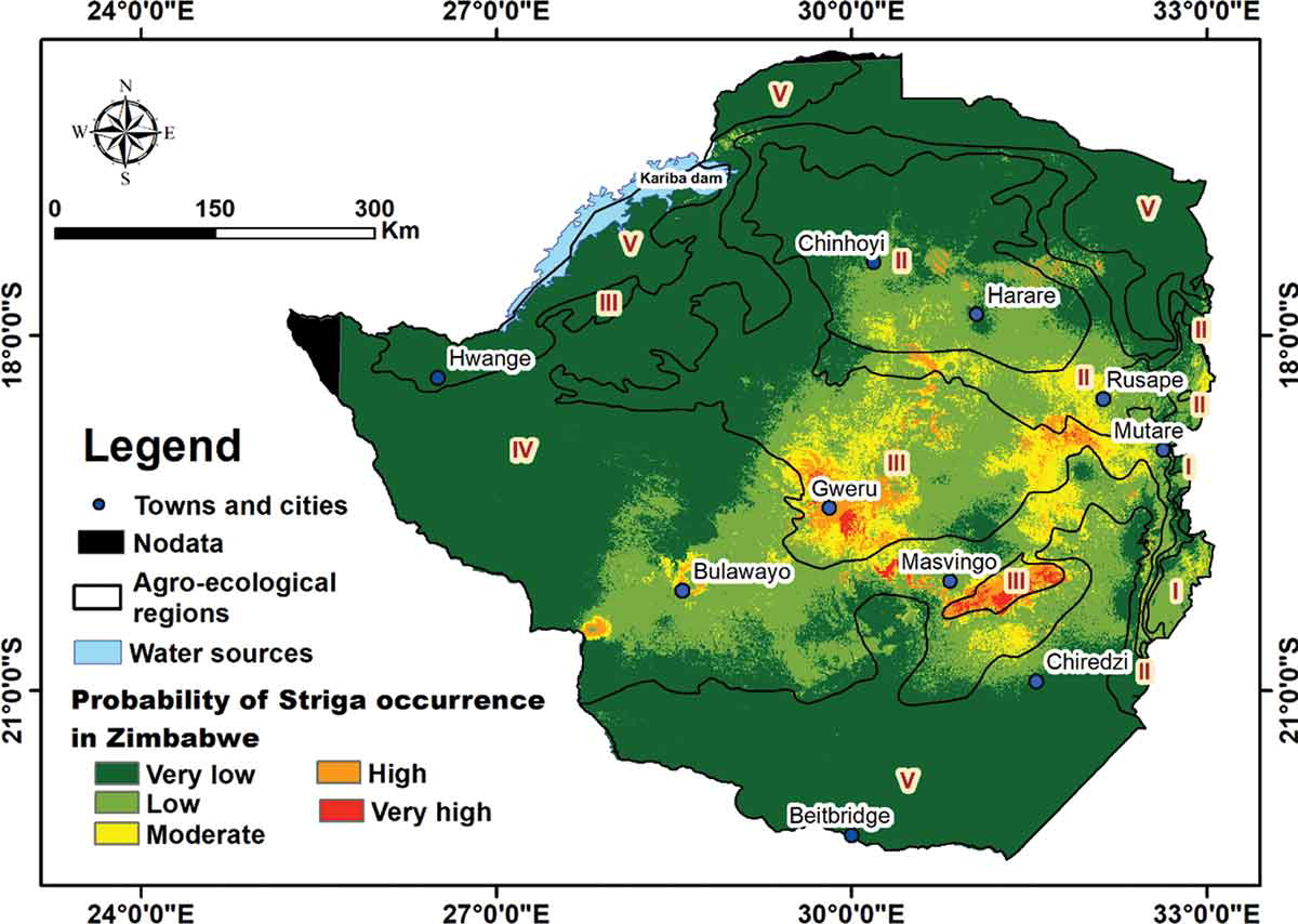 Striga weed map current