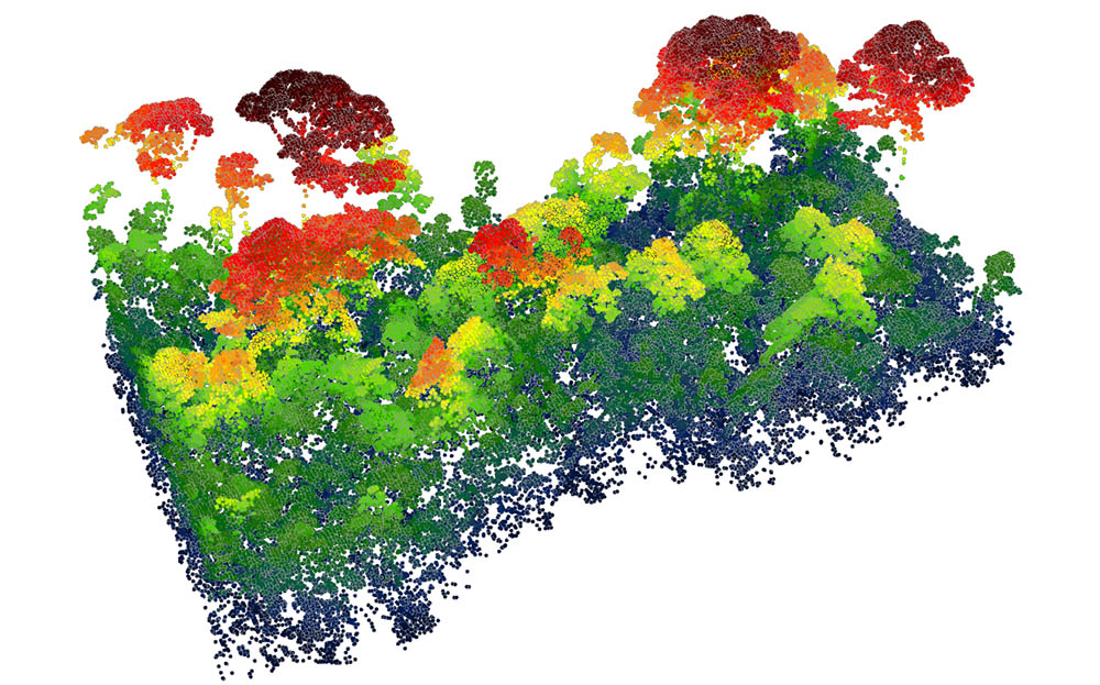 RSS LiDAR_Trees